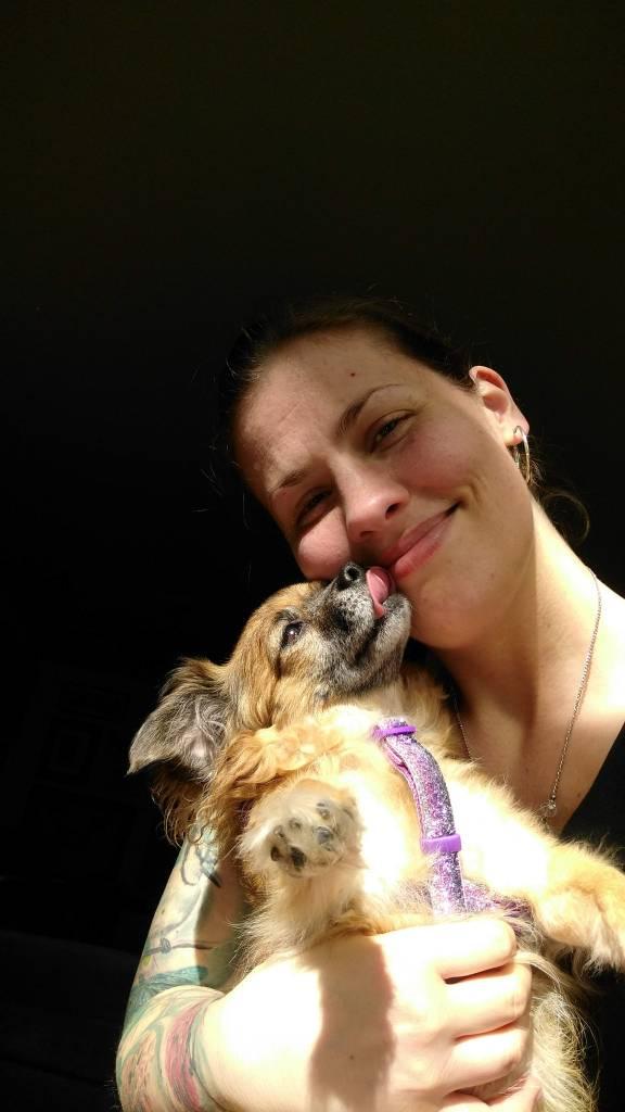cute dog giving kisses
