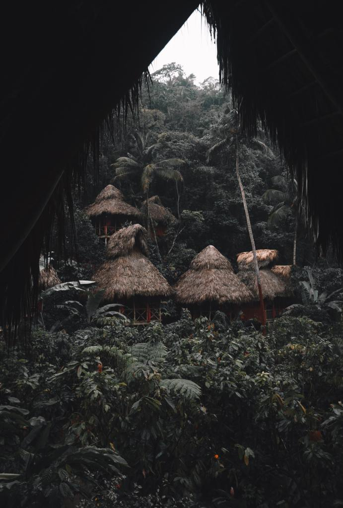 village huts in jungle woods