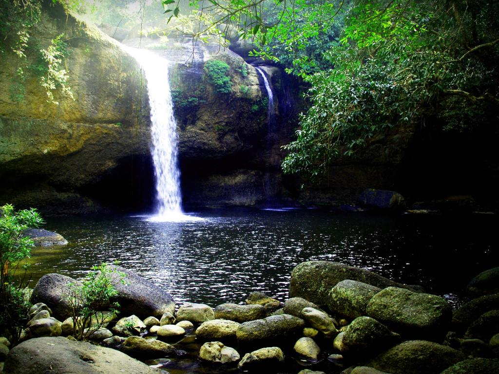 waterfall in forest with caves